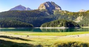 Panorama黑湖在杜米托尔国家公园 免版税库存照片