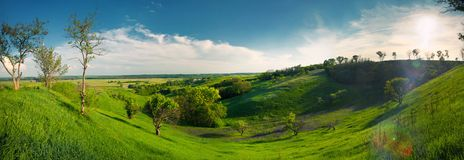 Panorama. Green panorama of trees and the valley Royalty Free Stock Photography