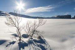Panorama 5 de neige Photographie stock libre de droits