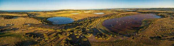 Panorama aéreo do pântano da lagoa da descoberta no por do sol O canguru é fotografia de stock