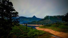 Panorama aan de piek en het meer van Sri Pada met theeaanplanting in Nuwara Eliya, Sri Lanka royalty-vrije stock afbeeldingen