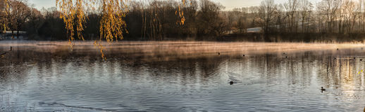 Panorama Abtskuecher Pond in the morning fog. Royalty Free Stock Images