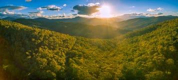 Panorama aereo della foresta e delle montagne australiane al tramonto Fotografia Stock