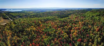 Panorama aerial view of fall forest Stock Photography