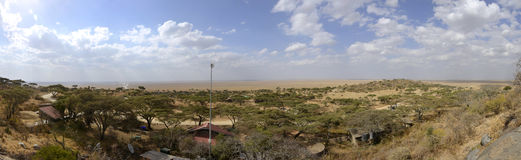 Panorama of African Savannah in Serengeti Royalty Free Stock Photography