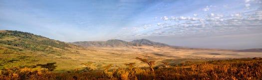 Panorama Afrykańska Sawanna w Serengeti Obraz Stock