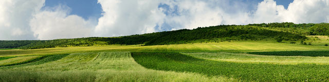 Panorama of agricultural land Royalty Free Stock Photos