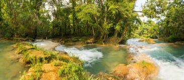 Panorama Agua Azul W Chiapas Zdjęcia Royalty Free
