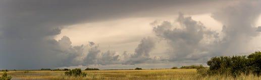 Panorama al parco nazionale dei terreni paludosi Fotografia Stock Libera da Diritti