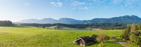 Panorama allemand d'Allgäu d'Alpes Image libre de droits