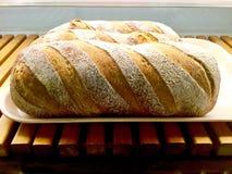 Panorama allemand de pain de levain Images libres de droits