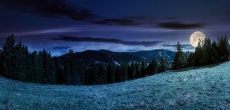 Panorama of alpine forest glade at night. In full moon light. beautiful early autumn landscape in Carpathian mountains. joyful vacation in wilderness Stock Photos