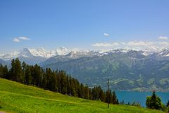 Panorama with alpine meadow from Niederhorn Royalty Free Stock Photos