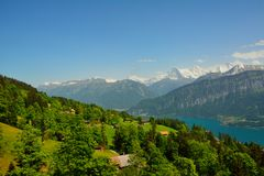 Panorama with alpine meadow from Niederhorn Royalty Free Stock Photography