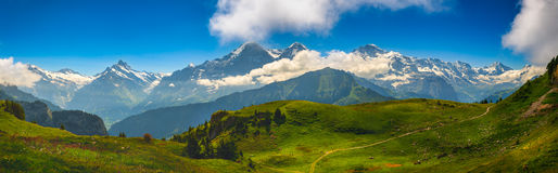 Panorama alpino: Cara norte de Eiger, cumes suíços Fotos de Stock Royalty Free