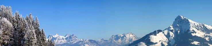 Panorama alpino con gli alberi coperti in neve Immagini Stock