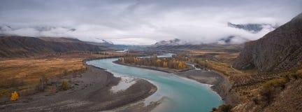 Panorama Altai góry Katun rzeki dolina Jesień Obraz Royalty Free