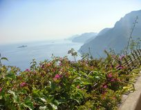 Panorama of the Amalfi-coast with in the foreground an expanse of plants with flowers with after all the mountains and the sea. Panorama of the Amalfi-coast stock image