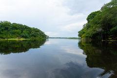 Panorama from Amazon rainforest, Brazilian wetland region. Royalty Free Stock Images