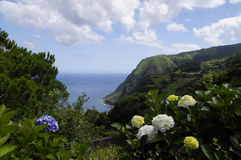 The panorama from the Aqua Retorta, Sao Miguel Stock Images