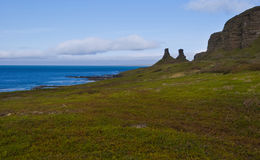 Panorama of the Arctic Coast Stock Image