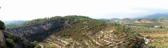 Panorama Arial of Terraced Olive Orchards. This is a panoramic image of terraced olive grove orchards along the mountainous Mediterranean side of Spain Royalty Free Stock Photo