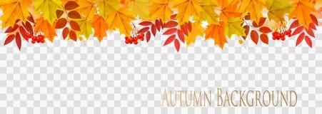 Panorama astratto di autunno con le foglie variopinte illustrazione di stock