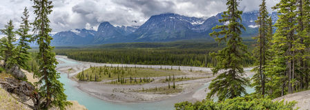 Panorama of the Athabasca River - Jasper National Park Royalty Free Stock Photos