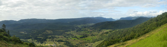 panorama Australia della valle di Numinbah di pollice 42x12 Fotografia Stock Libera da Diritti