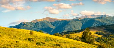 Panorama of autumn countryside with grassy rolling. Hills. wonderful evening scenery with beautiful clouds above the distant ridge stock images