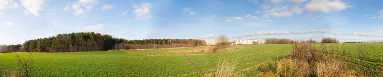Panorama of autumn field. Belarus royalty free stock photography