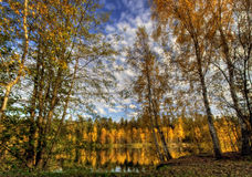 Panorama of Autumn lake Stock Images