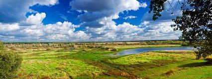 Panorama of autumn meadow Stock Image