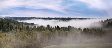 Panorama of autumn mist over the forest Royalty Free Stock Photography