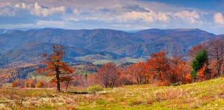 Panorama of autumn mountains Stock Photos