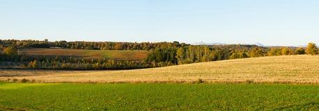 Panorama Autumn Scenery Stock Image