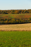 Panorama Autumn Scenery. Panoramic view of autumn landscape with cultivated lands in the foreground and groves, oak and pine forests and mountains in the Stock Photography