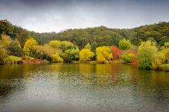 Panorama of autumn trees around the pond Stock Photography