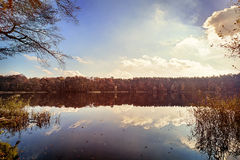 Panorama of autumn trees. At a glassy lake royalty free stock image