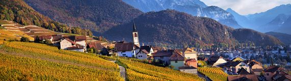 Panorama of autumn vineyards in Switzerland Royalty Free Stock Photography