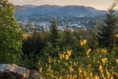 Panorama av Baden-Baden Royaltyfri Foto