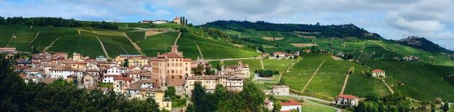 Panorama av Barolo piedmont, Italien royaltyfri fotografi