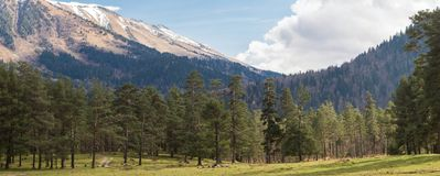 Panorama av bergen Royaltyfria Foton