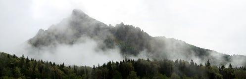 Panorama av bergen Arkivfoton