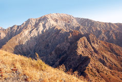 Panorama av bergen av den västra Tien Shan Royaltyfria Foton