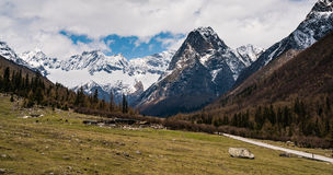 Panorama- av berget för fyra flickor Arkivfoto