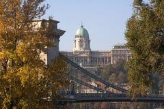 Panorama av Buda Castle och den Chain flodbron Royaltyfria Bilder