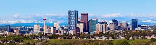 Panorama av Calgary och Rocky Mountains