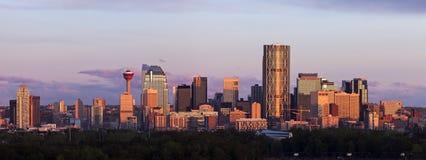 Panorama av Calgary på soluppgång Royaltyfri Foto