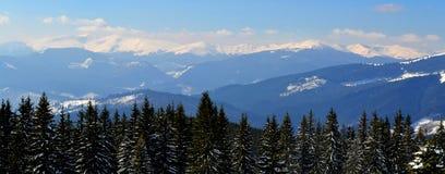 Panorama av Carpathian berg från överkant av det Dovha berget i solig frostig dag Vinter som klättrar och skidar arkivfoton